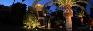 Landscape Lighting Professional in Orlando