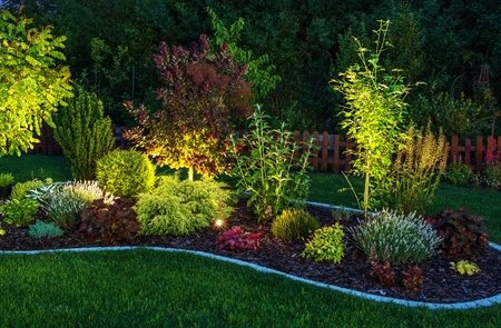 When to Use Uplighting and Downlighting in Your Yard
