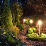 Landscape Lighting in Garden